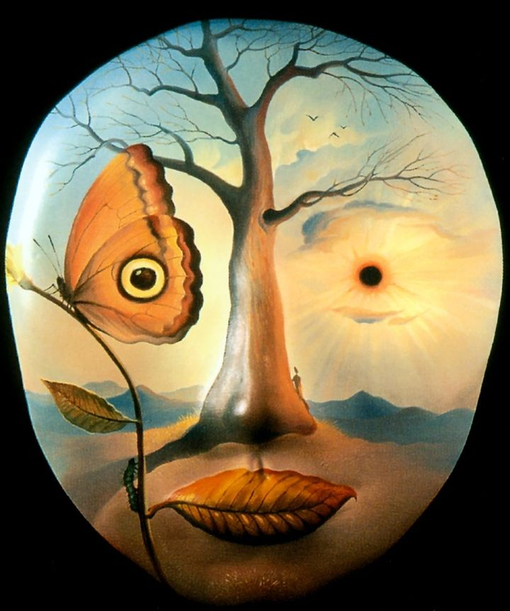 I guess this image is about nature, because it used sky as a person's face, sun and butterfly as eyes, tree as nose and leaf as mouse, this visual art may remind us should to protect the natural resources, because our life can not leave with air, sun. soil and water.