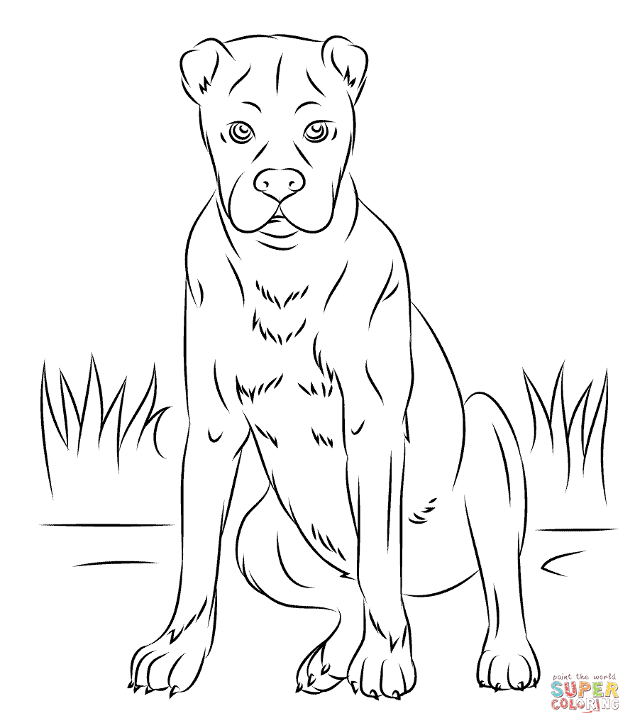 Boxer Dog Dog Coloring Page Boxer Dogs Boxer Dog Breed