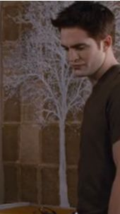 yes i know it's in twilight (blek) but i love the white tree painted over the old looking book pages!