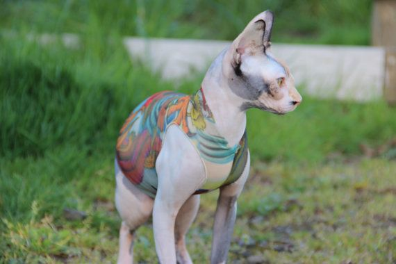Sphynx Cat Tattoo Clothes Japanese Dragon In Adult Cat Sizes Tattcat Tattoo Inspired Sphynx Cat Clothes Dog C With Images Sphynx Cat Clothes Sphynx Cat Tattoo Sphynx Cat