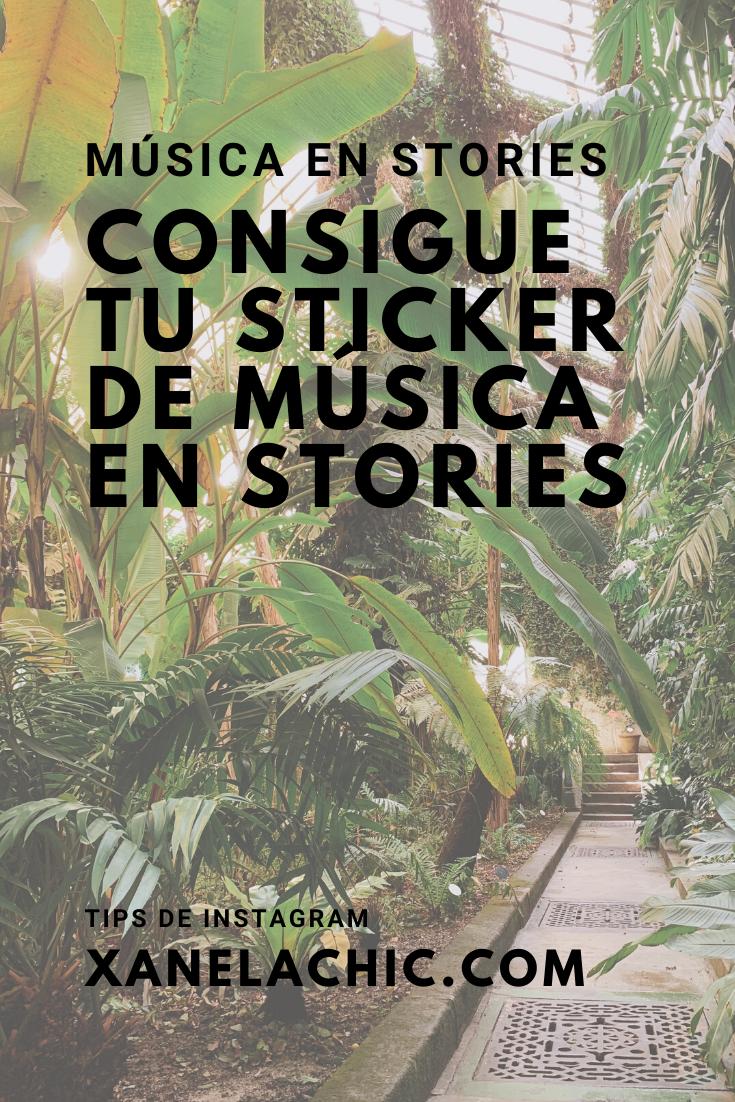 Si No Puedes Poner Música En Tus Stories De Instagram Te Cuento Todos Los Pasos A Seguir Para Conseguirla Ta Consejos Para Instagram Instagram Redes Sociales