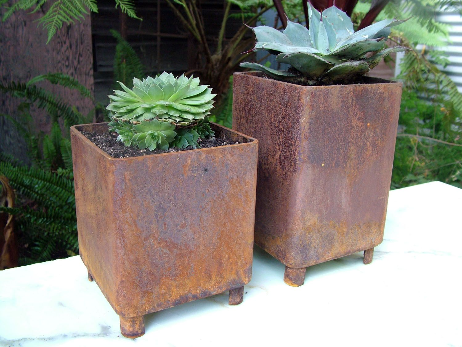 Image Of Metal Planter Boxes Rusty Weld Planter Boxes