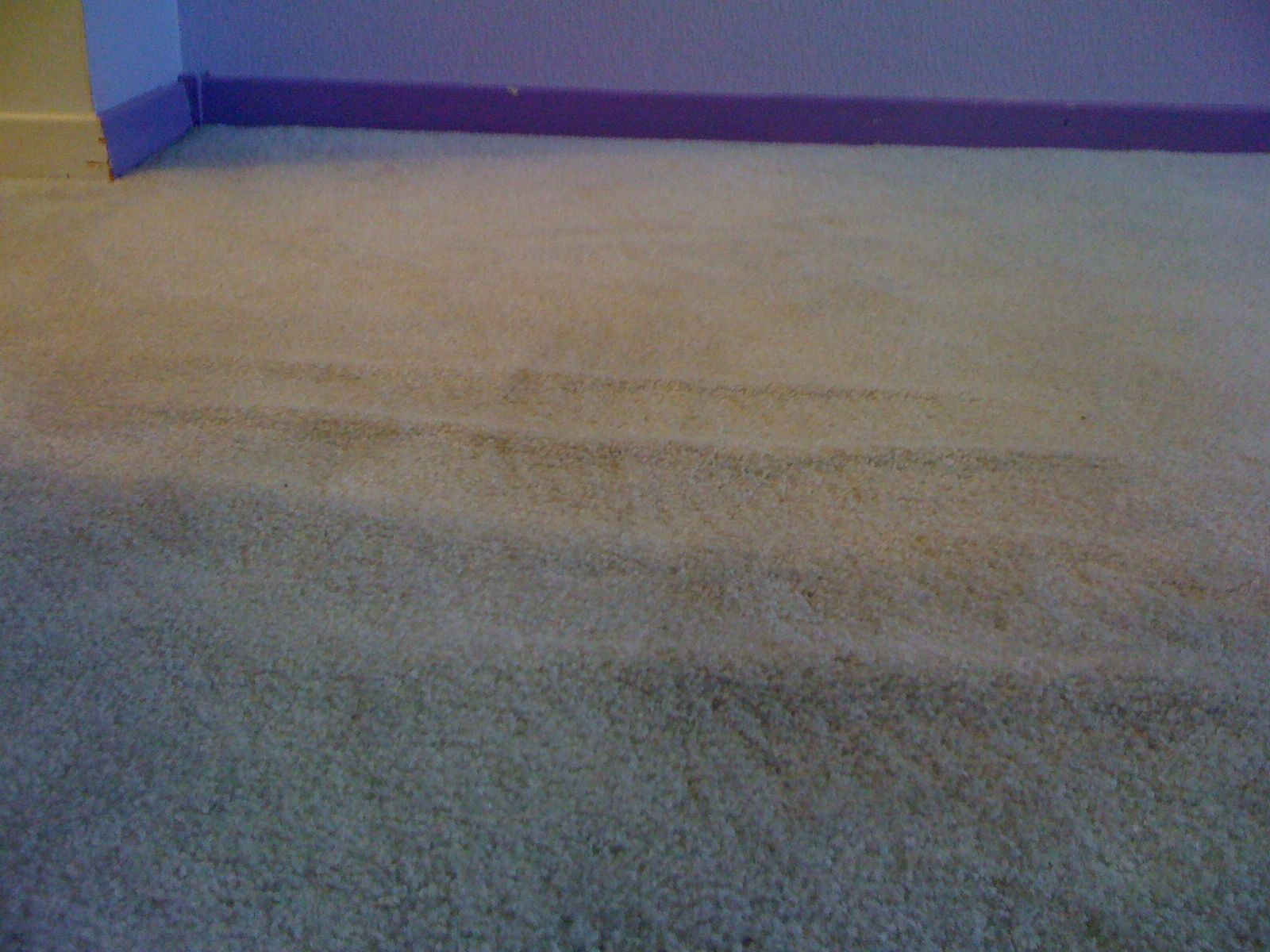 Carpet Repair In Portland Sean S Carpet Care Carpet Repair Carpet Installation Carpet Care
