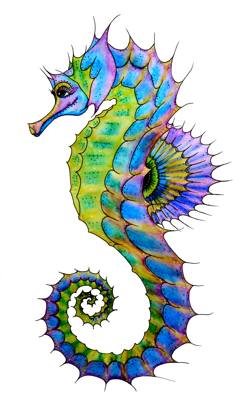 Seahorse-PNG-HD.png (1024×1711) | sea creatures | Pinterest ...
