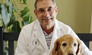 Vets Are Using Fear Free Tactics So Pets Can Chill Out At The Doctor S Office Vets