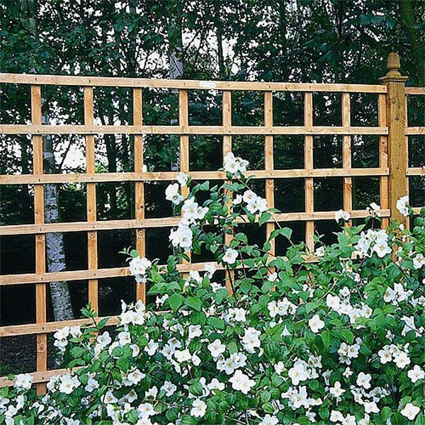 Bon Forest Heavy Duty Trellis Panels | Webbs Direct Garden Centre