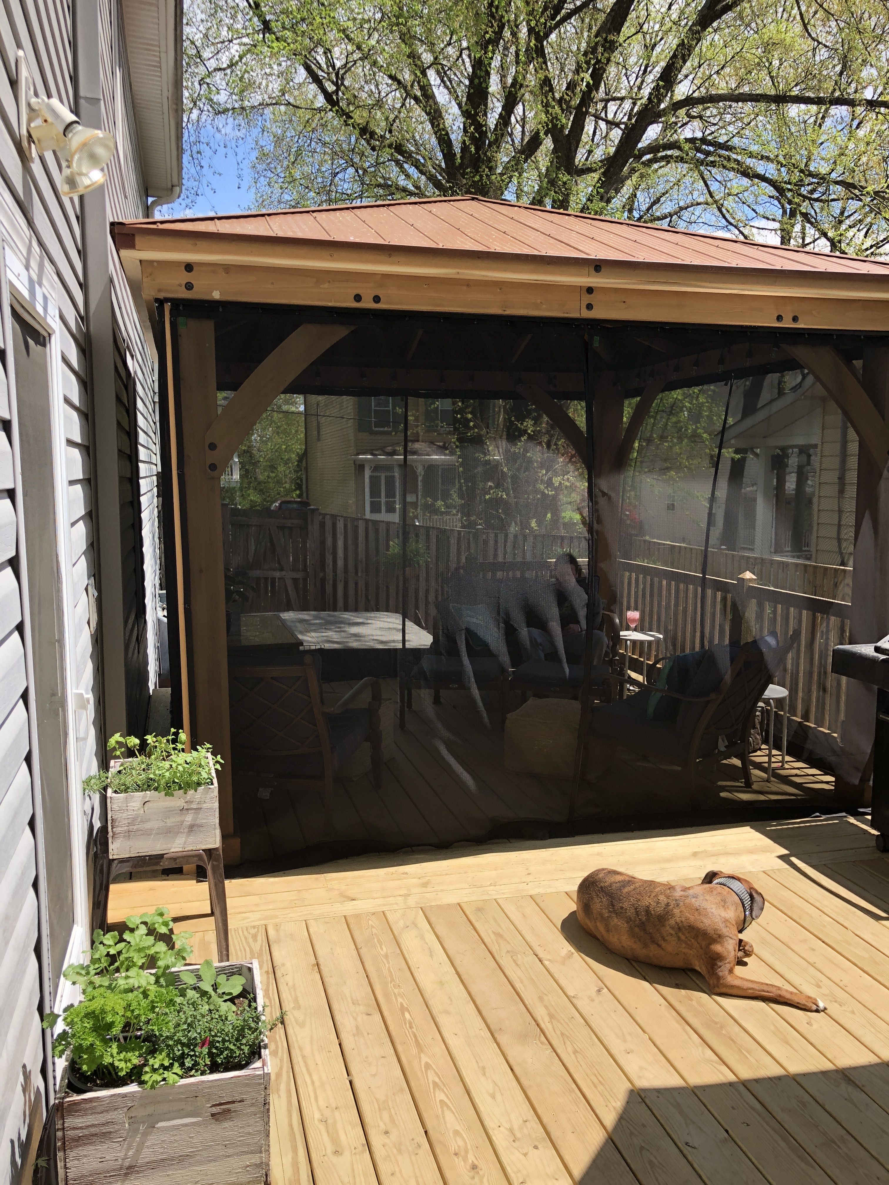 Yardistry Gazebo From Costco On Our New Deck With Screen