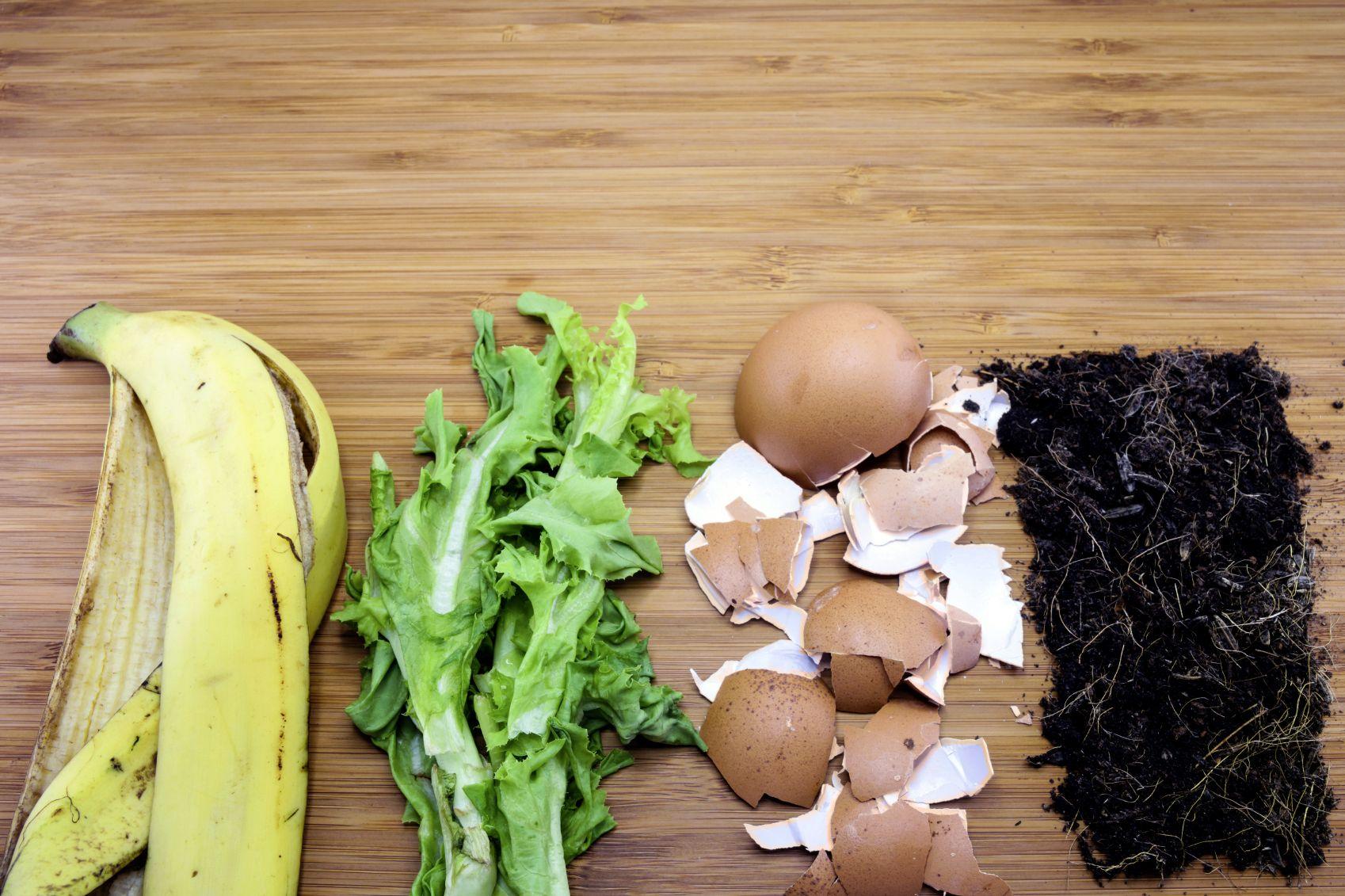 8 Best Homemade Garden Fertilizers Garden Compost Organic