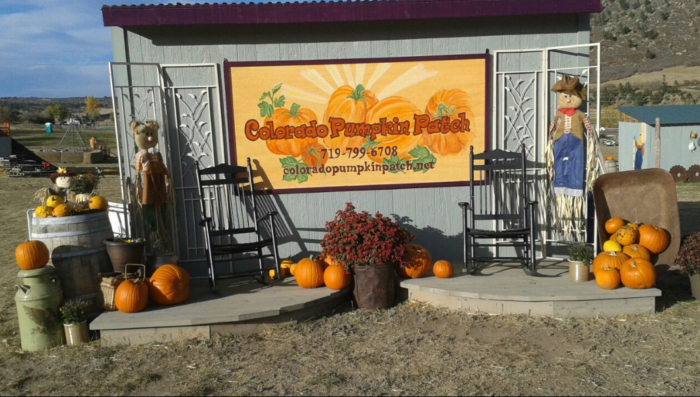 4. Colorado Pumpkin Patch (Larkspur)