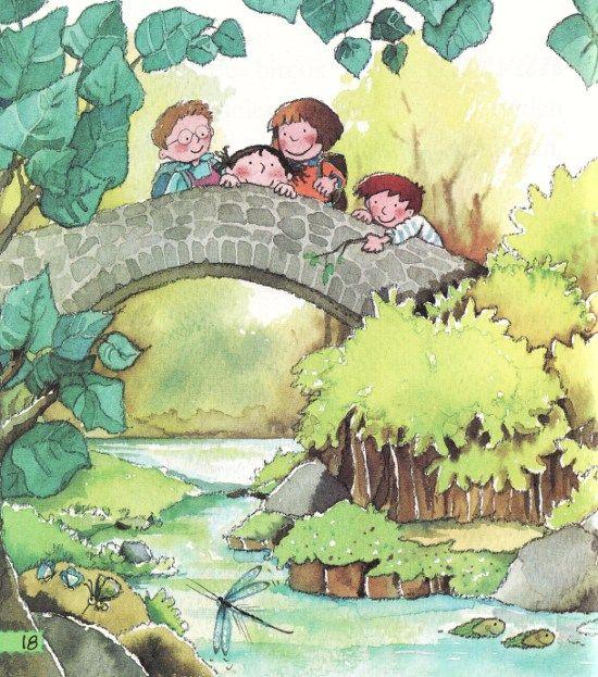 Mevsimler Serisi 3 6 Yas Ilkbahar Yaz Sonbahar Kis Bir Dolap Kitap With Images Basic Drawing Children Illustration Drawings