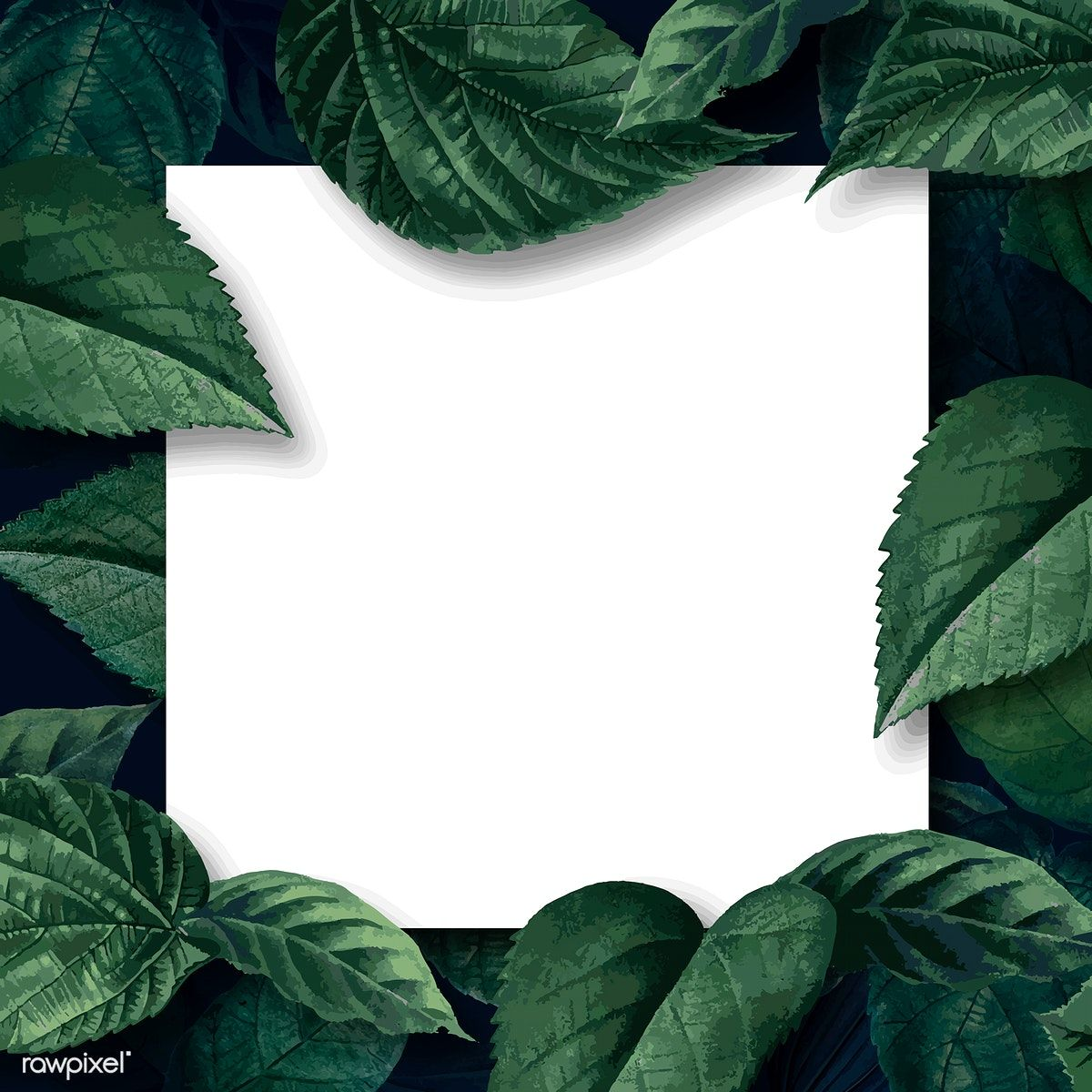 White square poster on a leafy background vector free