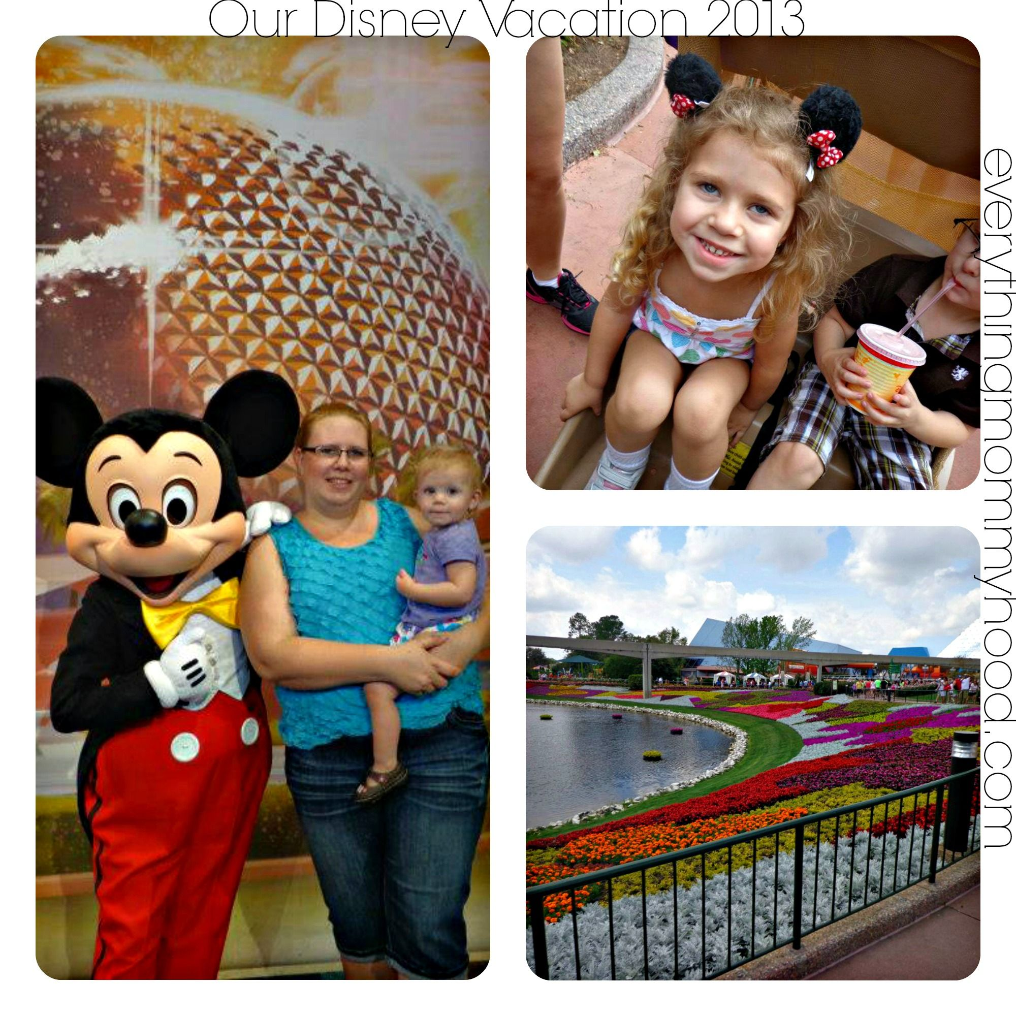 Disney World Vacation Packages  DEALS you wont find