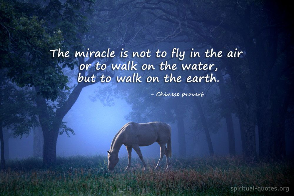 Spiritual Quotes Pinsjakyra Friedt On Fantasy  Pinterest  Miracle Quotes .