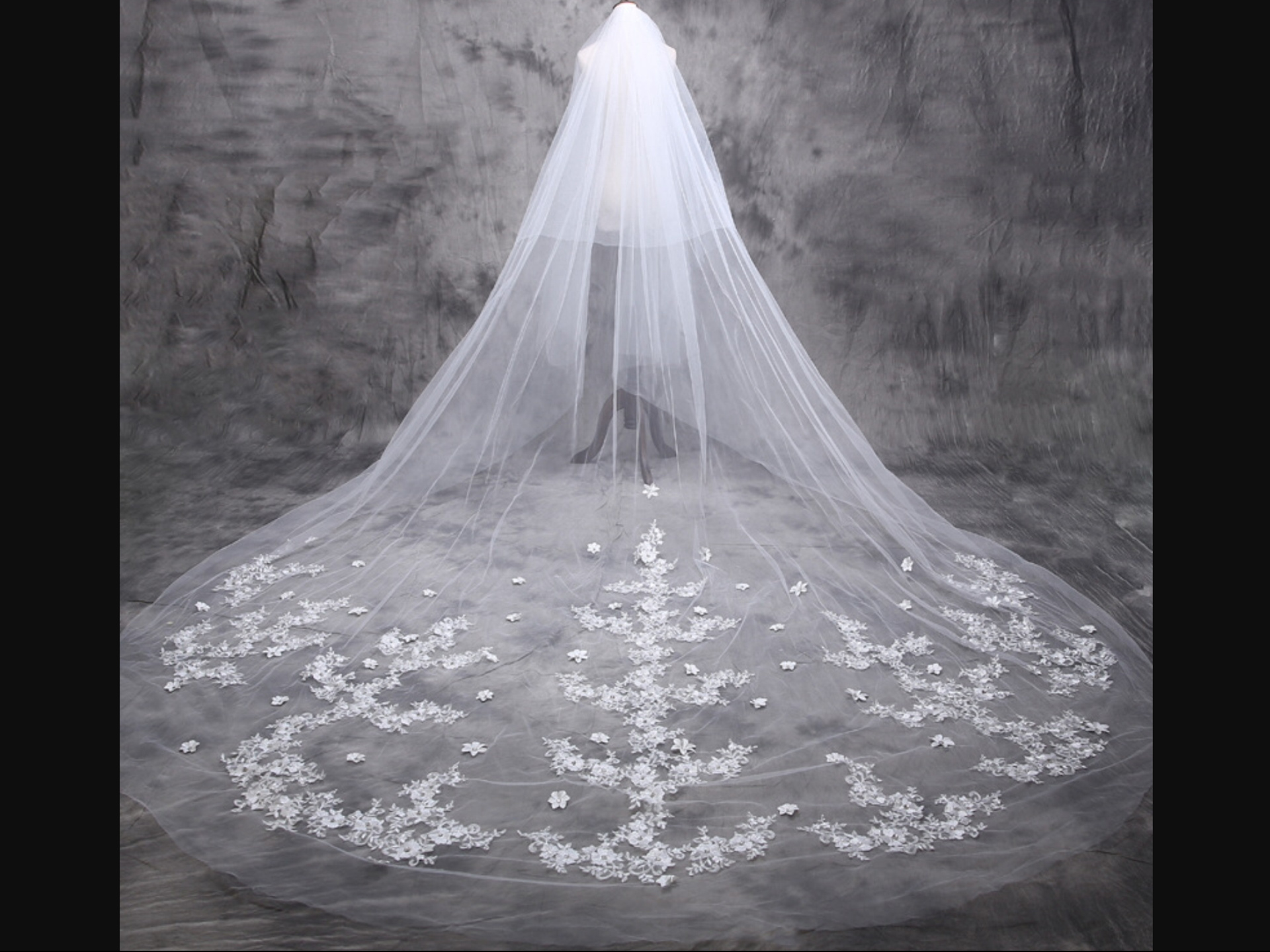 My Mate SebaCiel in 2020 Cathedral wedding veils, Lace