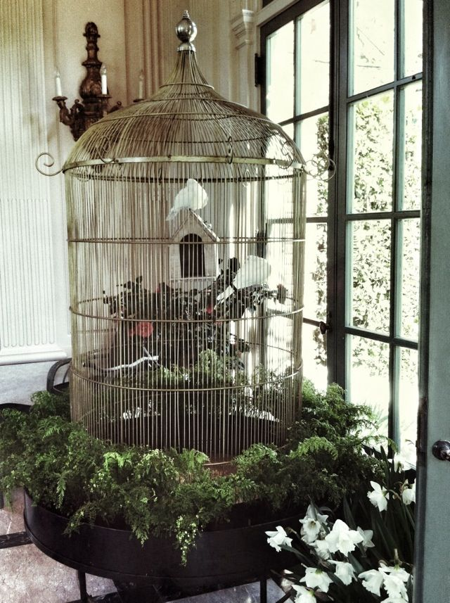 Birds Cage Bird Cage Decor Large Bird Cages Diy Bird Cage