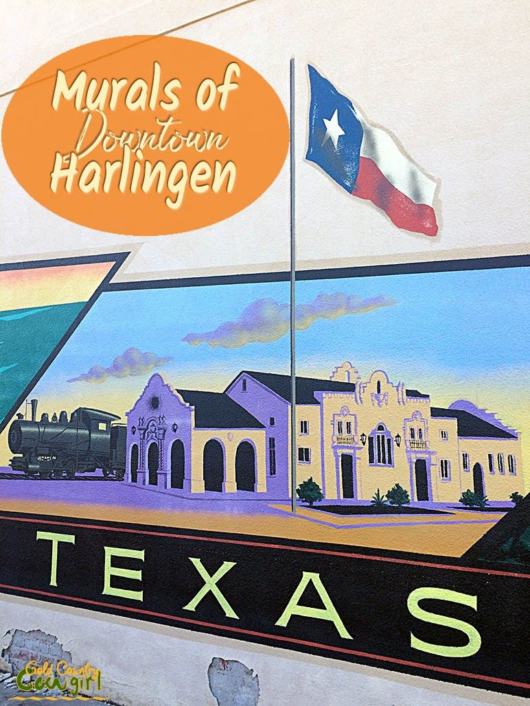 The Murals Of Downtown Harlingen Harlingen Mural La Trip
