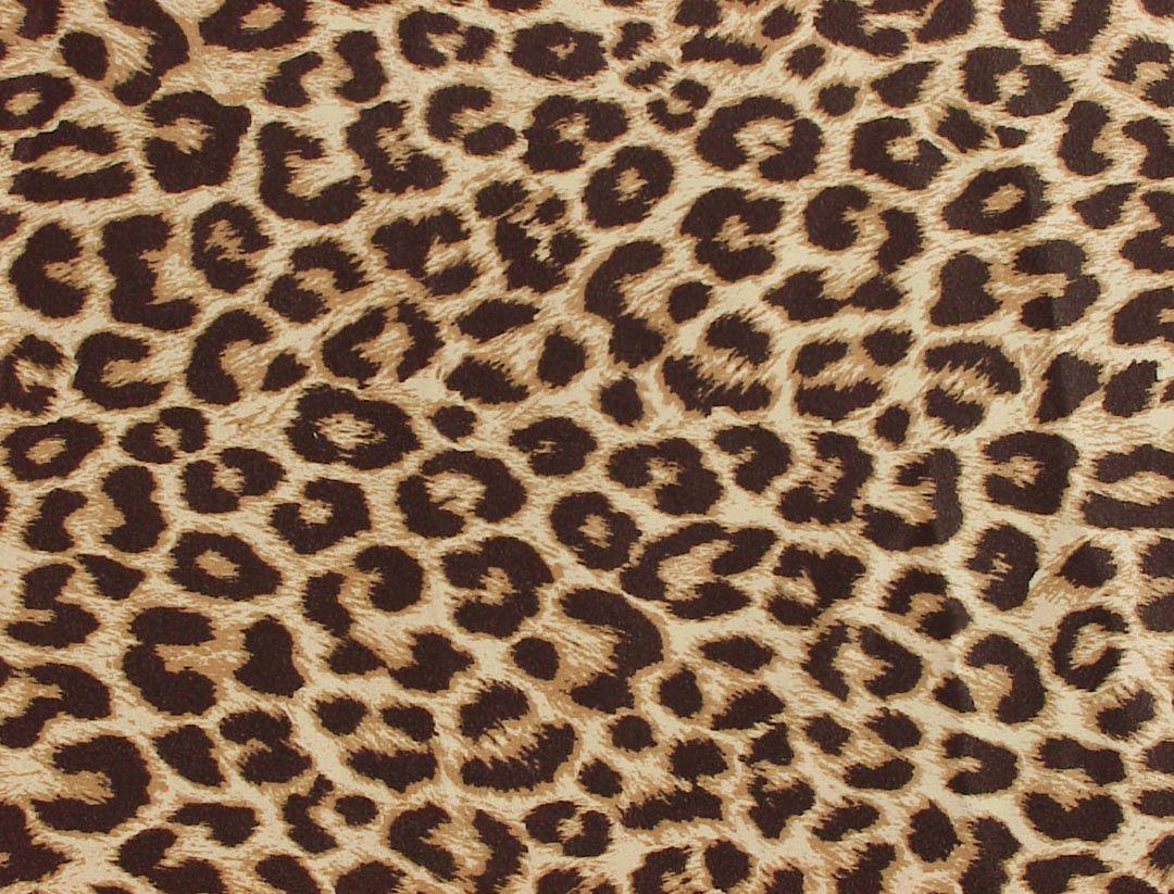 patterns leopard - Google Search Cheetah Print, Leopard Print Wallpaper, Leopard Prints, Animal