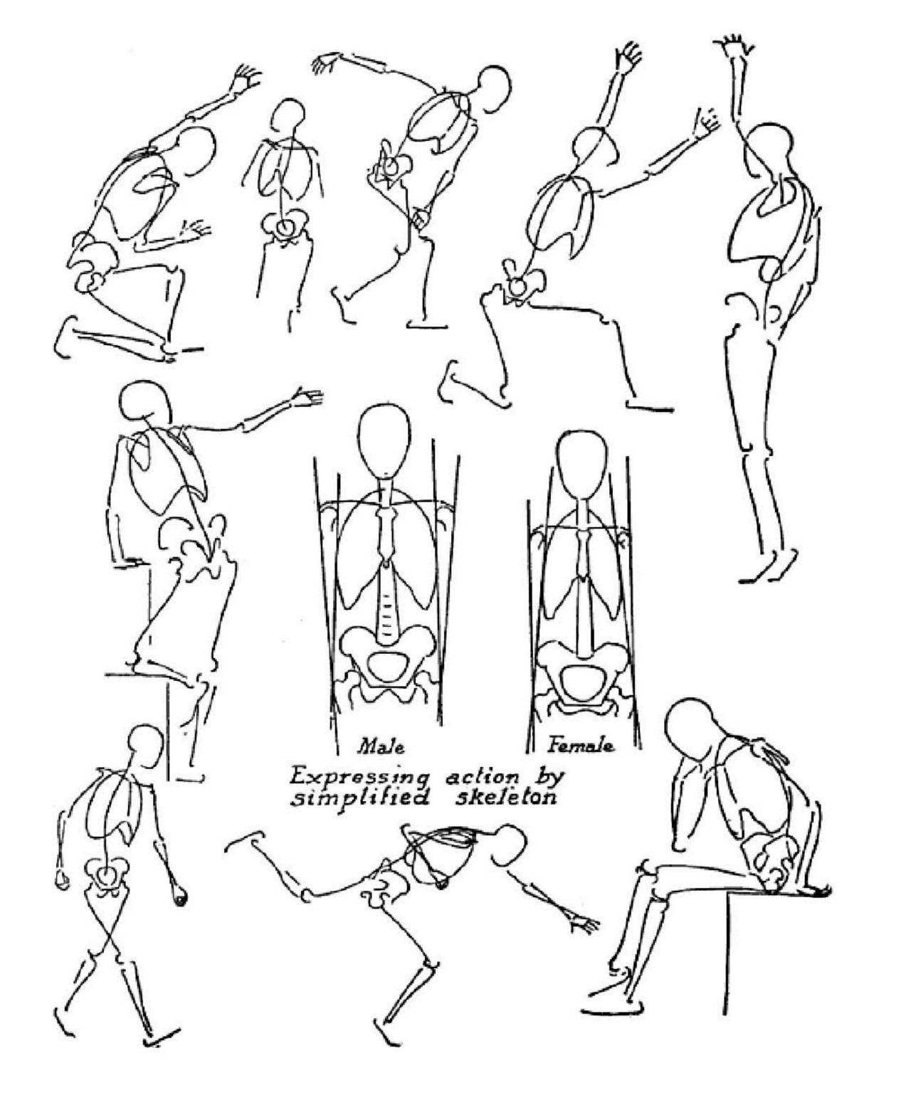 Anatomy and Drawing by Victor Perard | Victor Perard | Pinterest ...