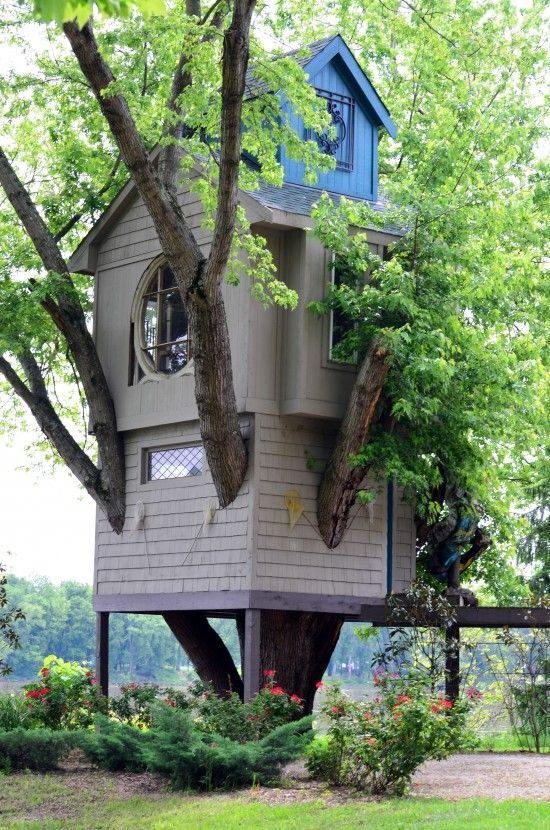 cool tree house My grands would | home sweet home | Pinterest ... Limb Tree For House Design on snowman designs, tree leaf designs, tree palm designs, tree of life designs, tree trunk designs, tree family designs, tree back designs, tree arm designs, pencil designs, tree root designs, beach designs, flowers designs, tree twig designs, scarecrow designs, candle designs, snow designs, tree wood designs, tree leg designs, tree hand designs,