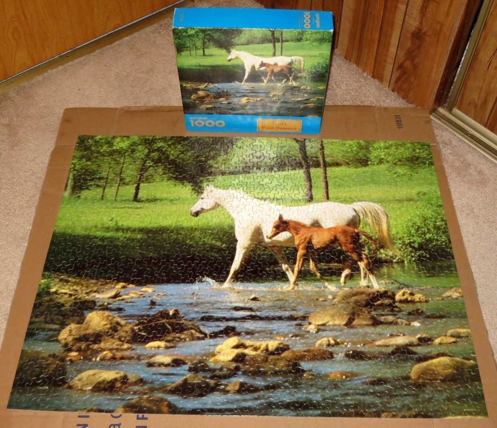 Spingbok 1000 Piece Puzzle Foals First Summer by Springbok Hallmark