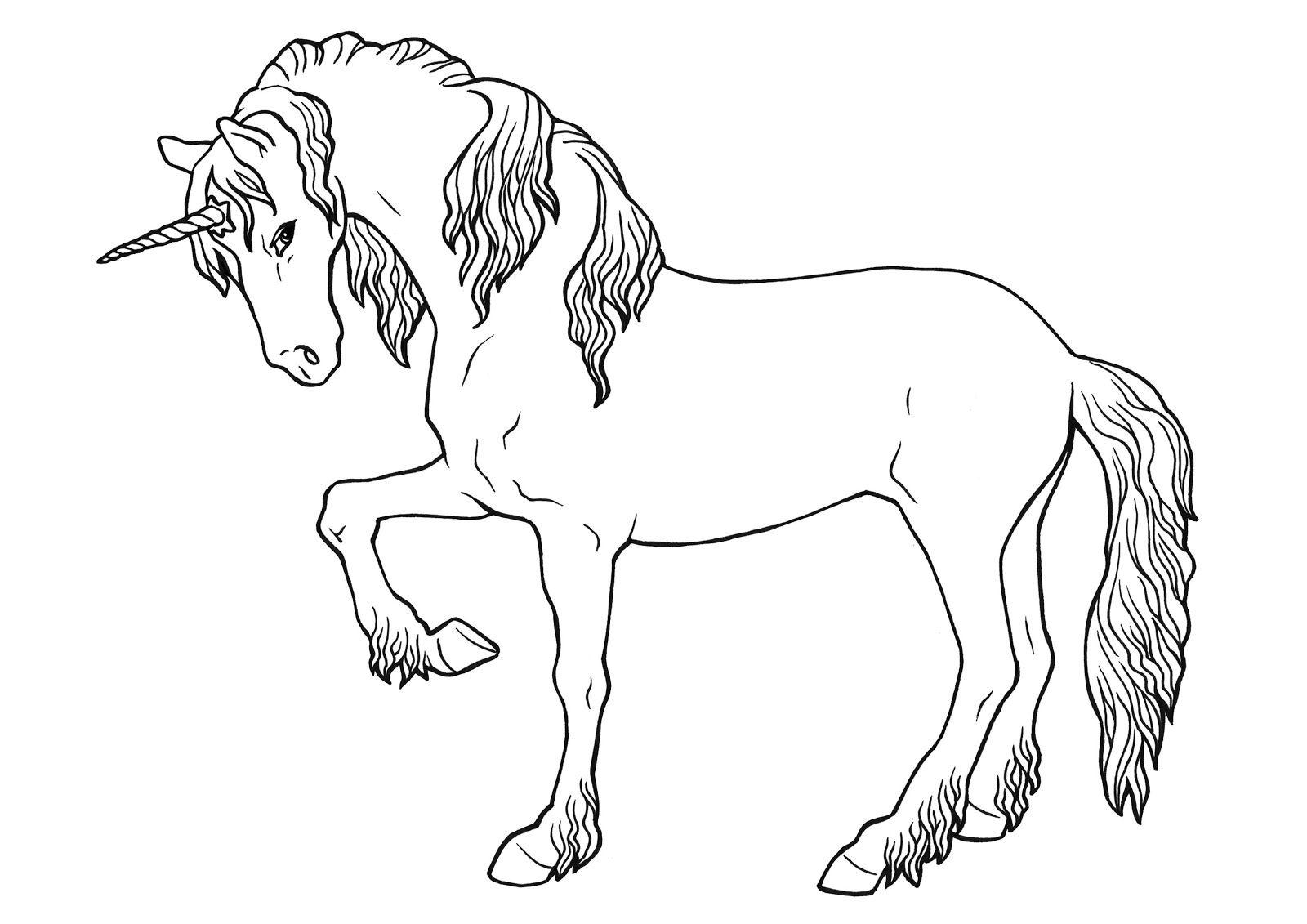 Ausmalbilder Einhorn Einhorn Zum Ausmalen Einhorn Zum Ausmalen Ausmalbilder Einhorn Ausmalbilder Pferde