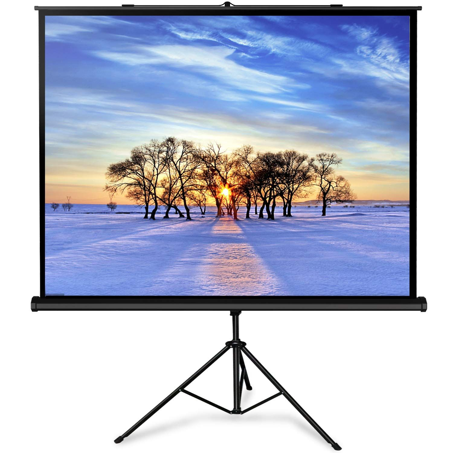 Perlesmith Projector Screen With Stand 100 Inch 4 3 Indoor Outdoor Height Adjustable Projection Screen Premium W With Images Projection Screen Outdoor Projector Screen