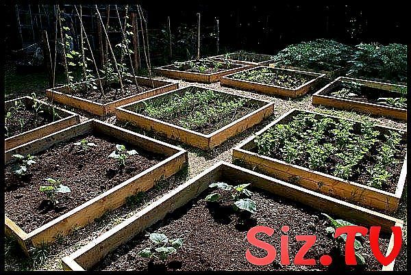 gemüse beet anlegen-in quadraten-aufteilen herbst                              ... gemüse bee... #beetanlegen gemüse beet anlegen-in quadraten-aufteilen herbst                              ... gemüse beet anlegen-in quadraten-aufteilen herbst                                                                                                                                                                                 Mehr,  #anlegenin #Beet #Gemüse #HerbsGardenforbeginnersraisedbeds #herbst # #beetanlegen