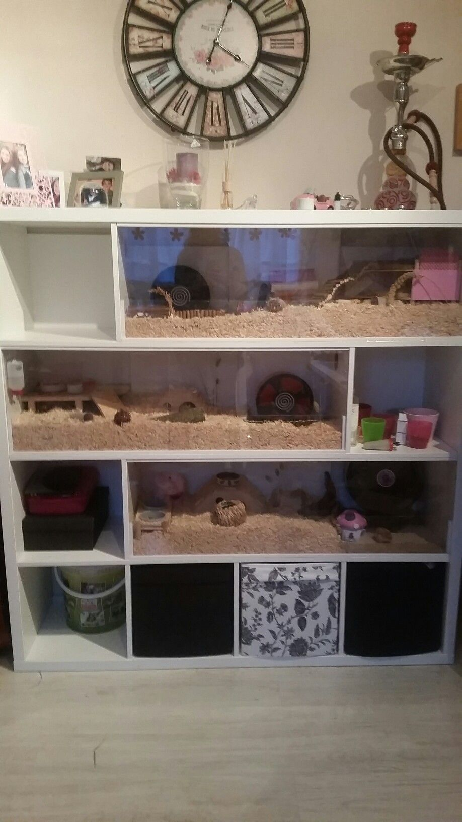 mein selbstgebauter hamsterk fig aus einem ikea kallax regal hamsterk fig ikea in 2018. Black Bedroom Furniture Sets. Home Design Ideas
