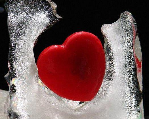 фото ледяное сердце как лед цариц цветов, можете