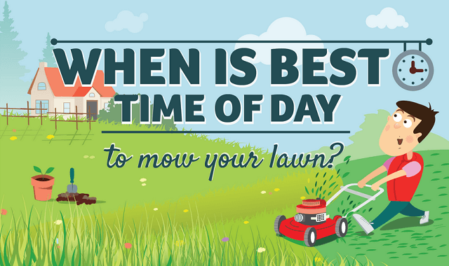 Best Time To Cut Grass