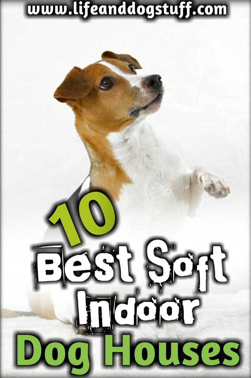 10 Best Soft Indoor Dog Houses For Small Dogs Indoor dog