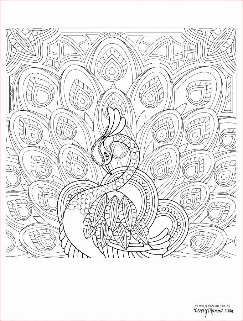 Anatomy Coloring Book For Kids Best Of Free Line Coloring Pages Batman Coloring Pages Games Buku Mewarnai Sketsa Pola
