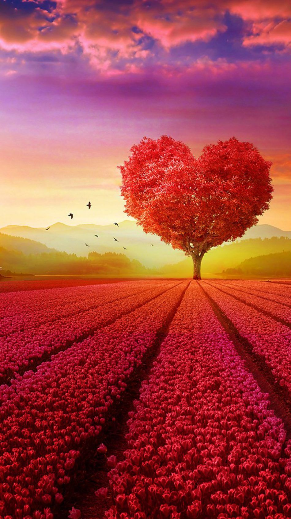 Love Heart Shape Tree Flowers Tree wallpaper iphone