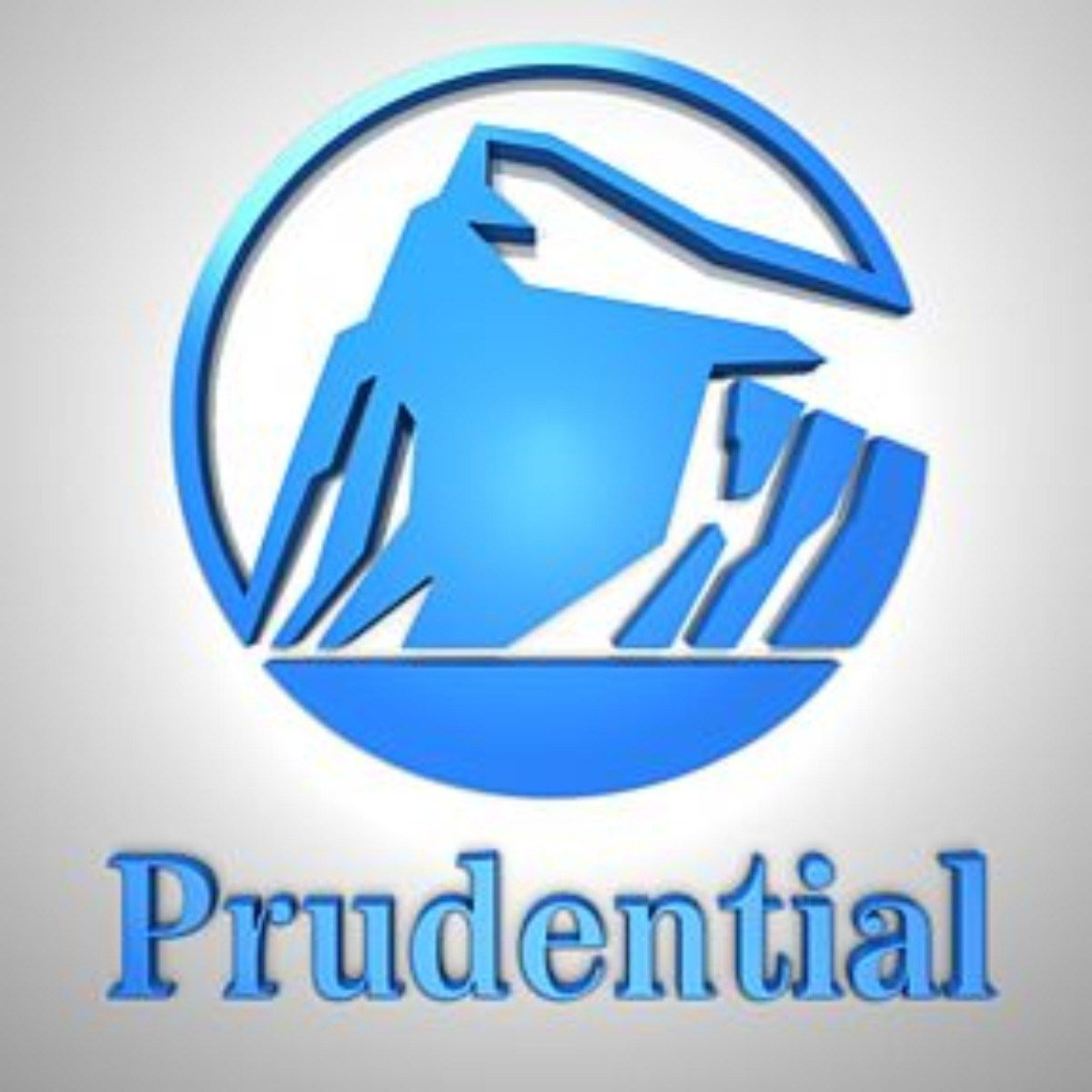 Prudential Term Life Insurance Quotes Online Prudential Financial Life Insurance  Tips Available Tools And