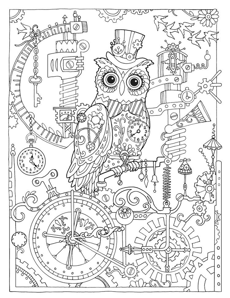Creative Haven Owls Coloring Book By Marjorie Sarnat Steampunk Owl