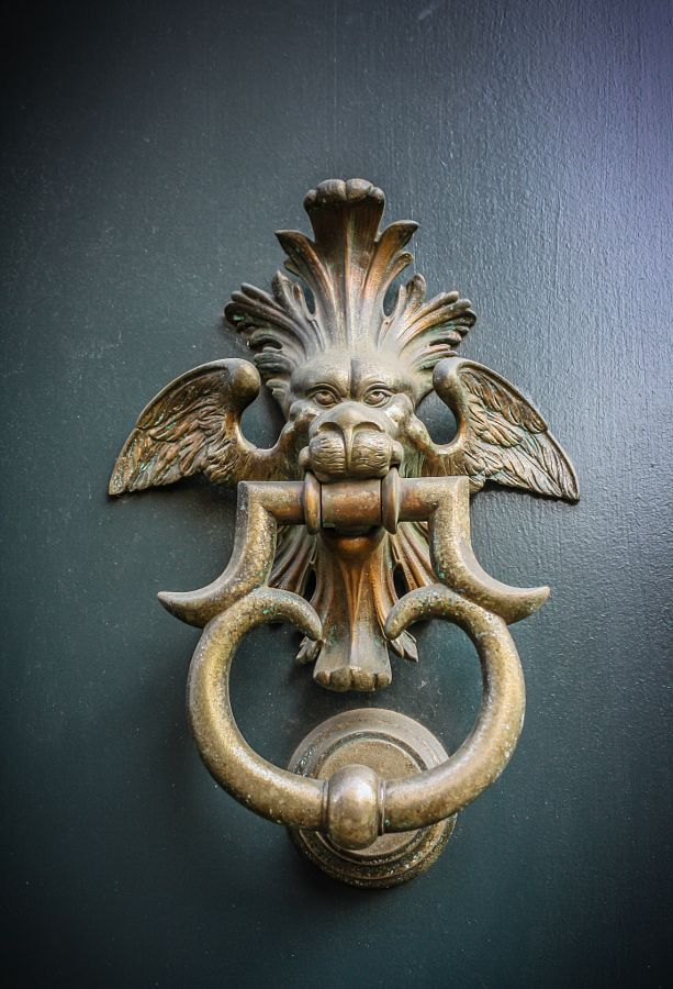 Pin On Animal Figure Door Knocker