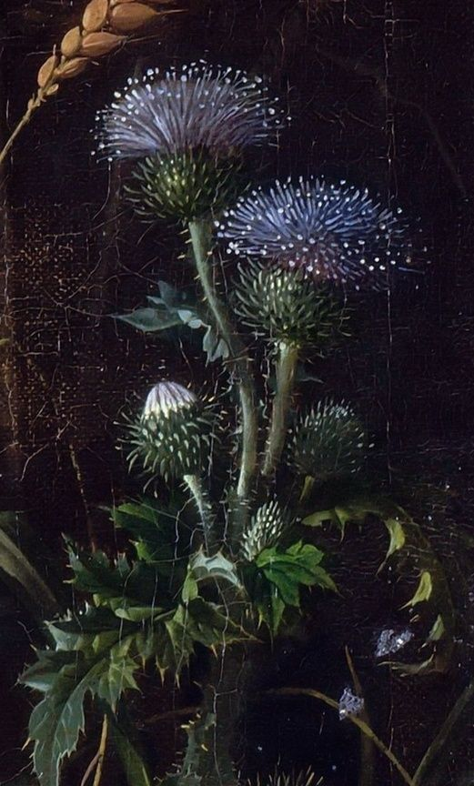 .:. Abraham Mignon . Flowers, birds, insects and reptiles