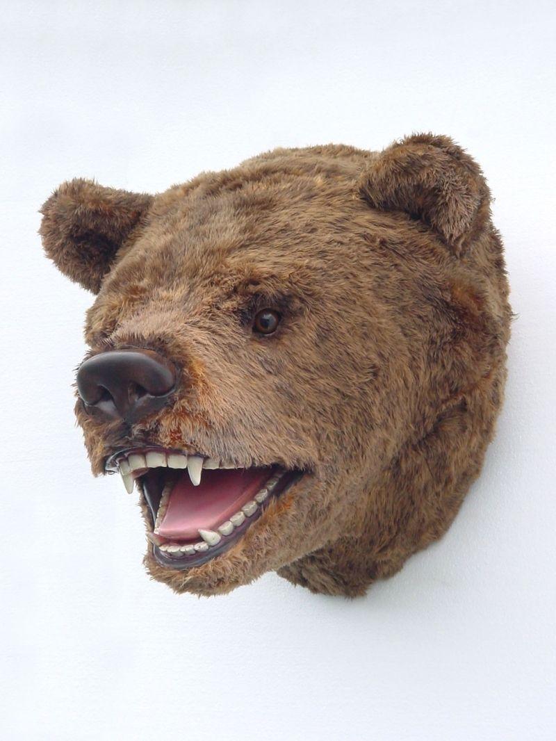 Pop Art Decoration Animals Mounted Heads Bear Head Mount