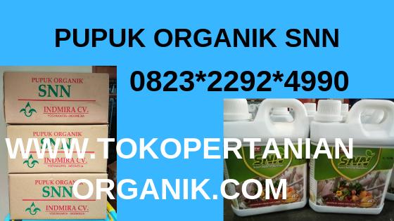 Terbaru 0823 2292 4990 Pupuk Padi Darat Simeulue Asli Pupuk Organik Untuk Padi Pupuk Organik Petani Benih