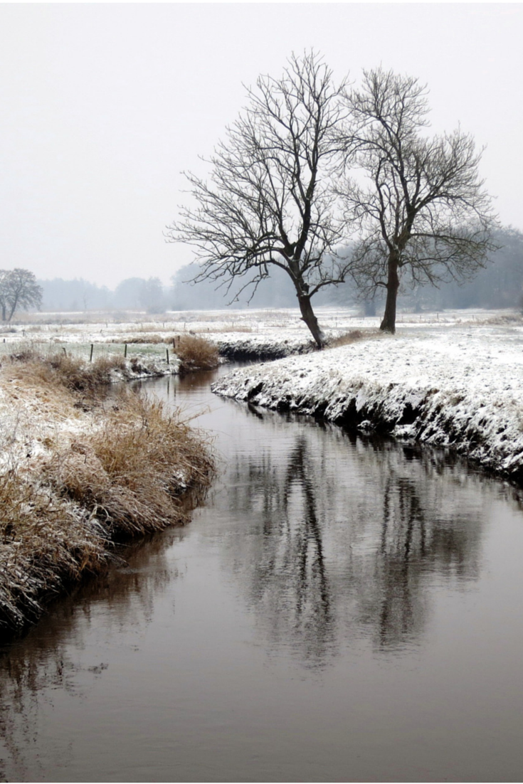 Winter Creek Curve Snow Trees Water Reflections Mysterious Mist Misty Beauty Of N Winter Landscape Winter Landscape Photography Fall Photography Nature