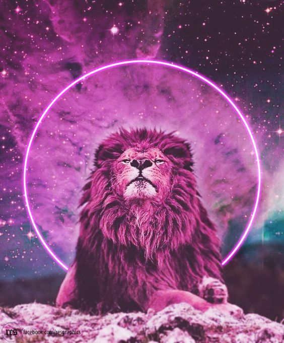 Psychedelic Pink Lion Art