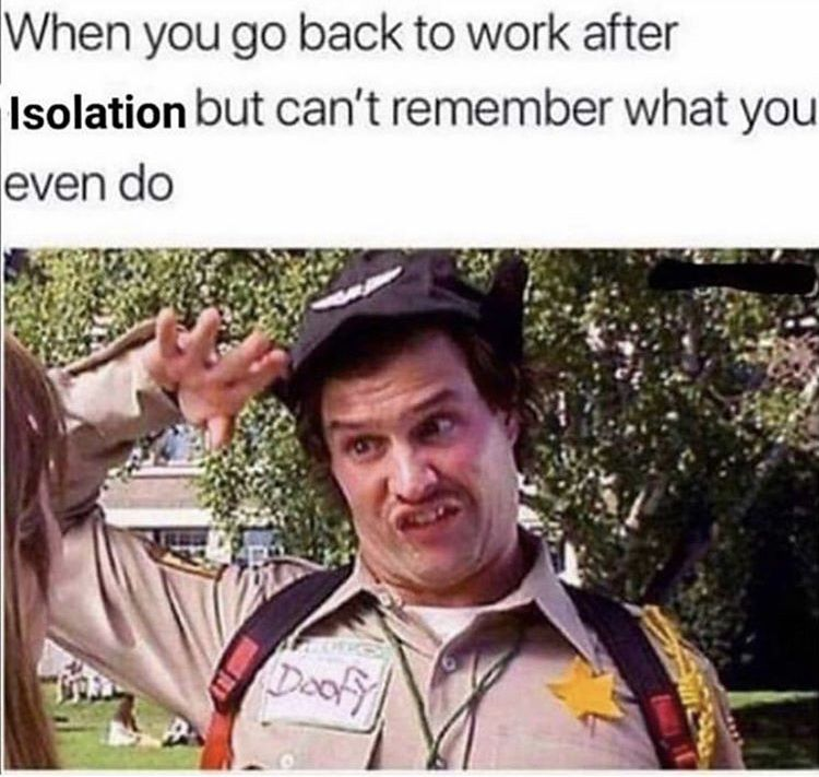 51 Fantastic Memes To Explode Your Day Work Quotes Funny Funny Memes About Work Work Humor