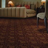 Olson Rug Royal Dutch Carpet Alexander Wine Stanton Carpet Patterned Carpet Flooring Store