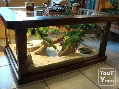 Terrarium coffee table for a camelion no cage to take for Table salon aquarium
