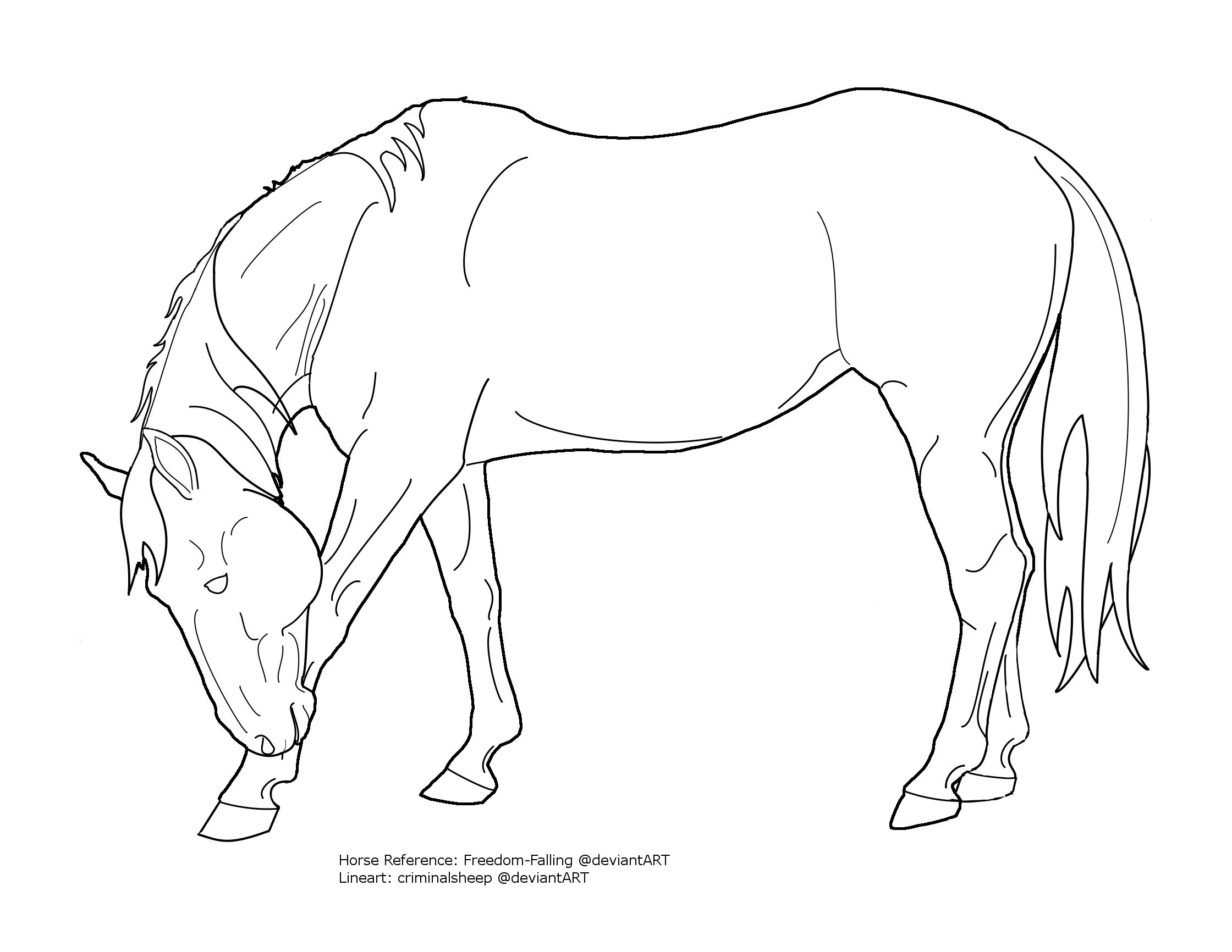 Arabian Horse Head Drawing Bowing horse lineart by