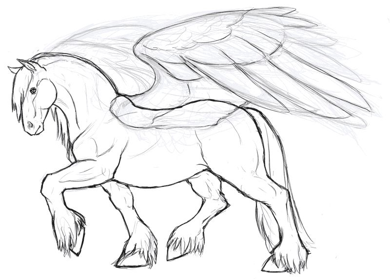Clydesdale Pegasus by whisperpntrdeviantartcom on deviantART