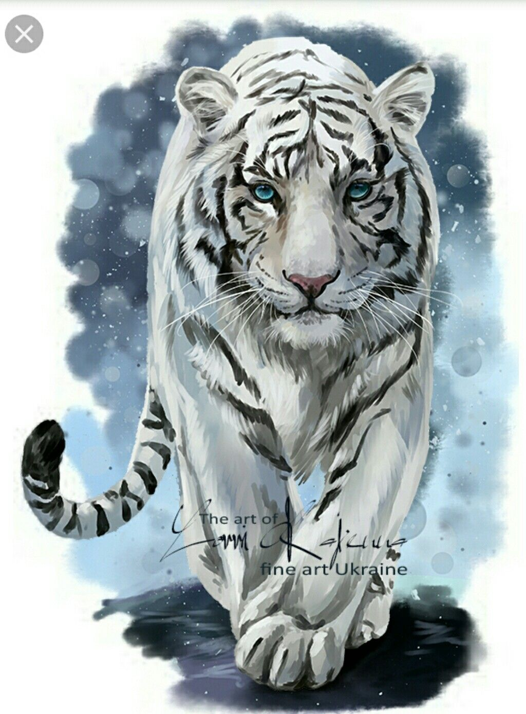 Pin By Rustam Regina On Tigry In 2020 Tiger Artwork Tiger Painting Tiger Pictures