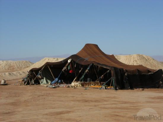 Berber Tent Selling Fossils by TravelPod Member Billybull ... click to see full size! & Berber Tent Selling Fossils by TravelPod Member Billybull ...