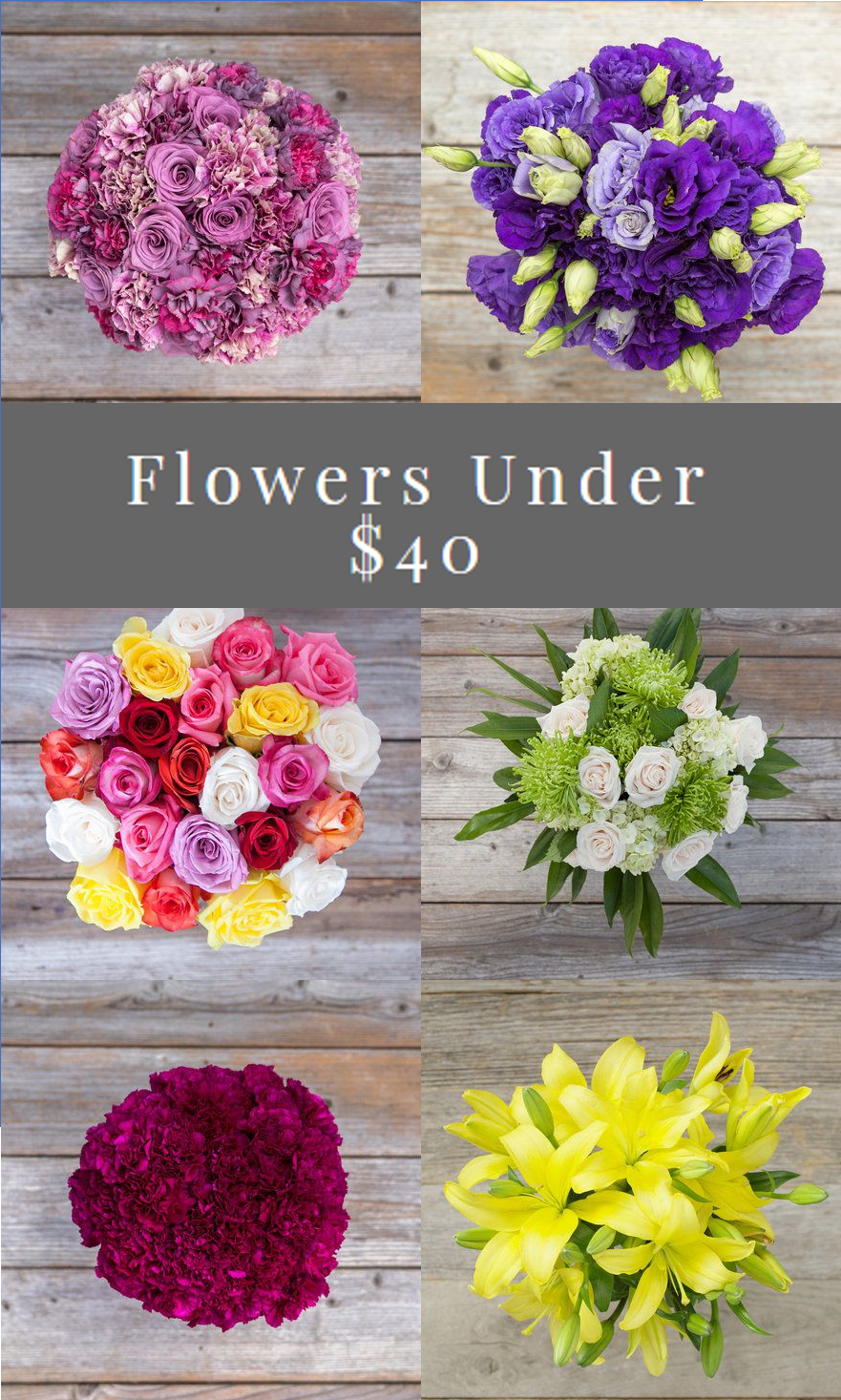 Bouqs Flowers under 40 Cheap flower delivery, Flower