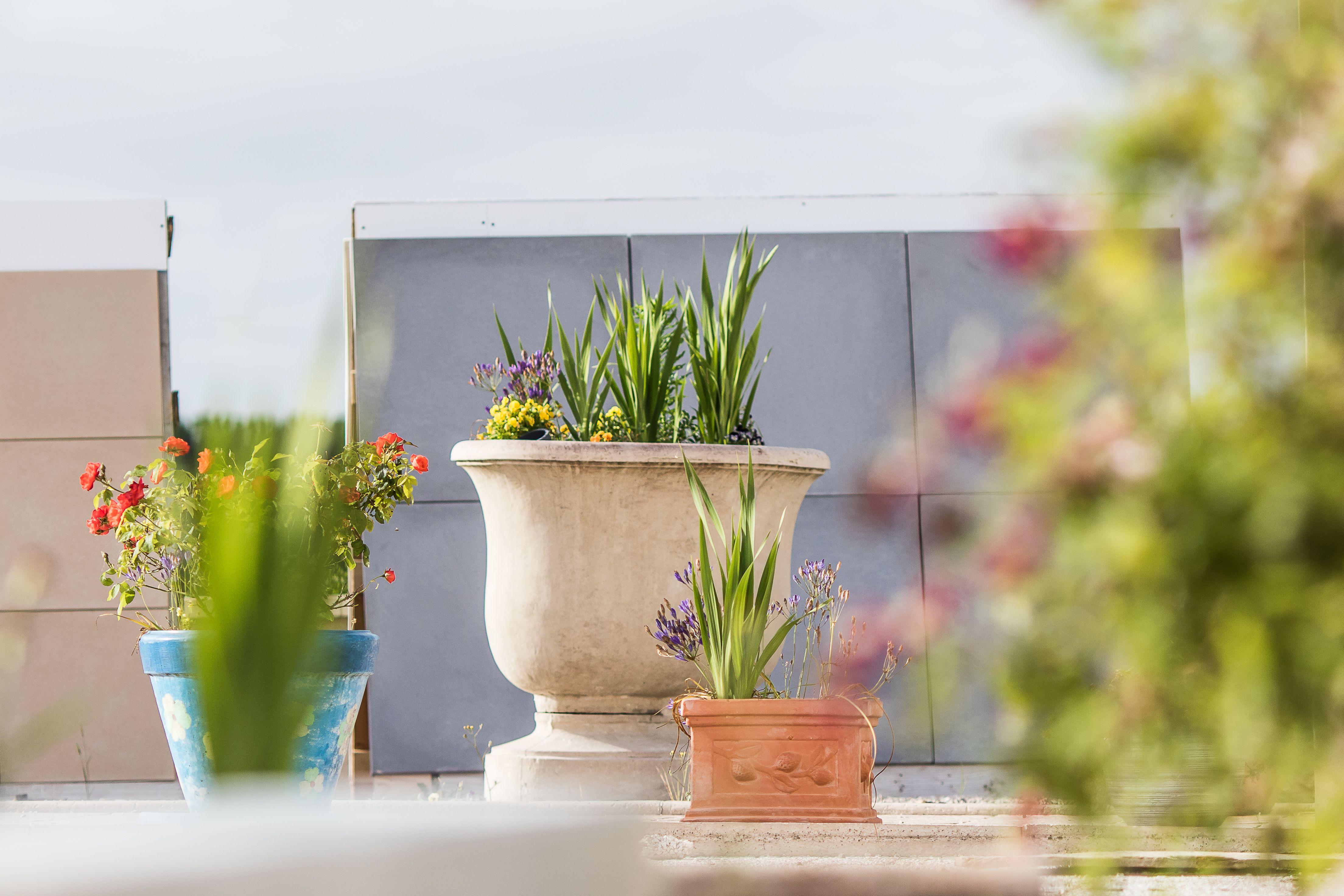 Aménagement et décoration de jardin. Grande vasque de jardin ...